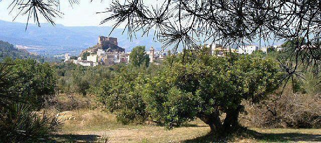 Castellnovo incluye en su web una agenda