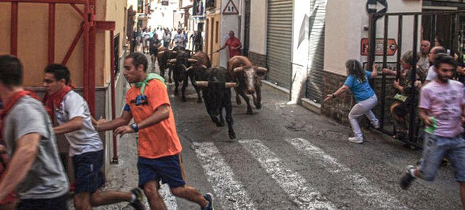 Comienza la semana taurina en Navajas