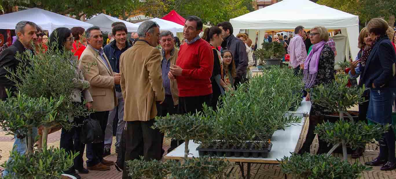 Celebran la XII Muestra Agrícola de Segorbe