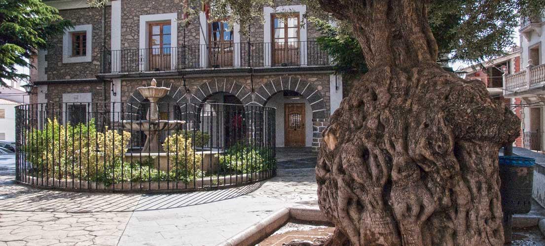 Bejís suspende los actos de San Antón por falta de gente