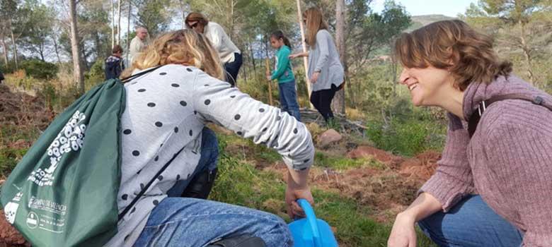 Escolares de Soneja plantan 700 plantones