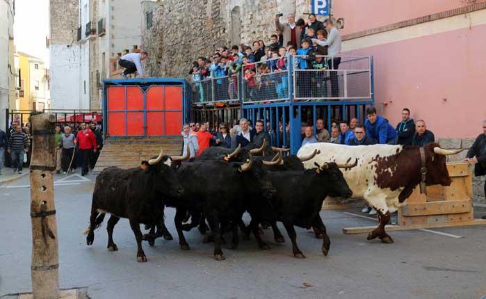 Incendio y herido por un toro en Jérica