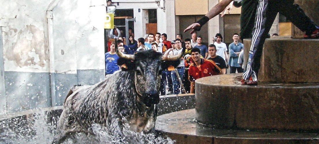 Altura concluye las fiestas de El Berro