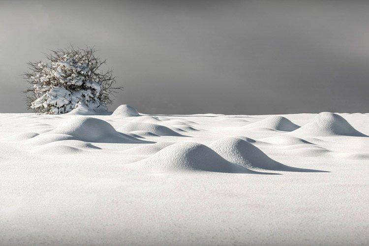 Pechos de nieve. Foto: J.Ortiz