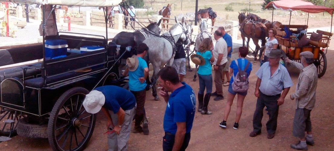 VII Vuelta en Carro y Caballo