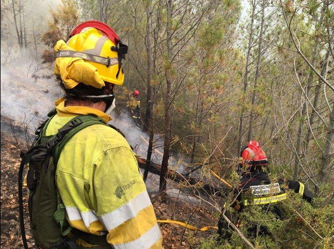 Luchando contra las llamas. Fotos:Siab