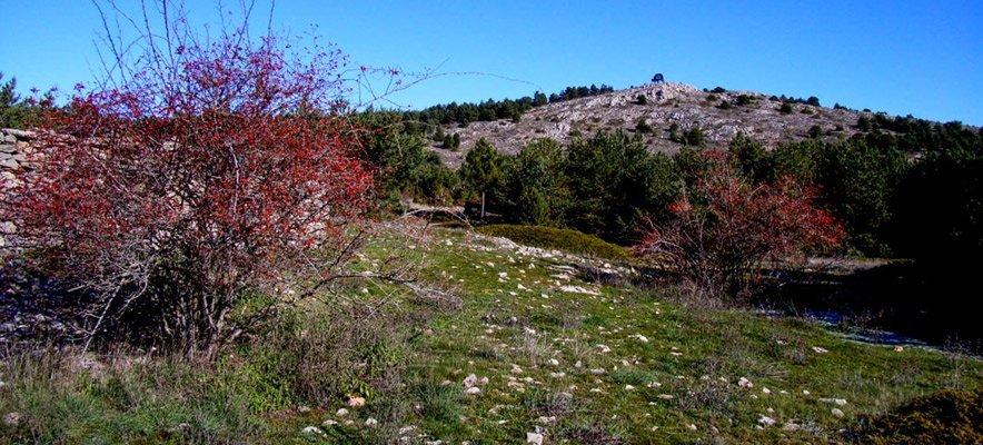 Acordes otoñales en la Sierra de El Toro