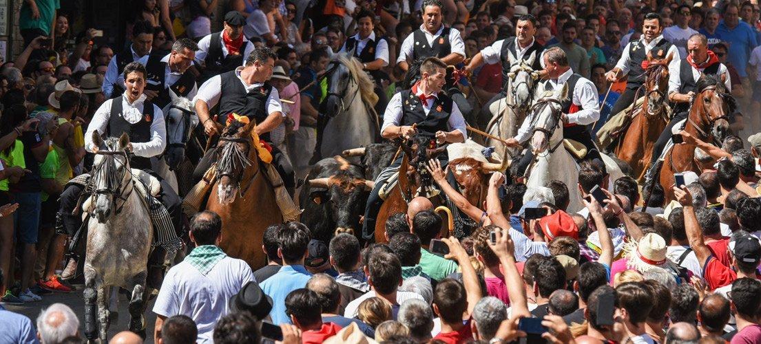 Ximo Puig presencia una Entrada excepcional