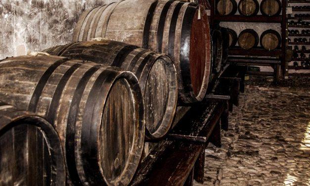 El Palancia y el vino, tras La catedral del mar