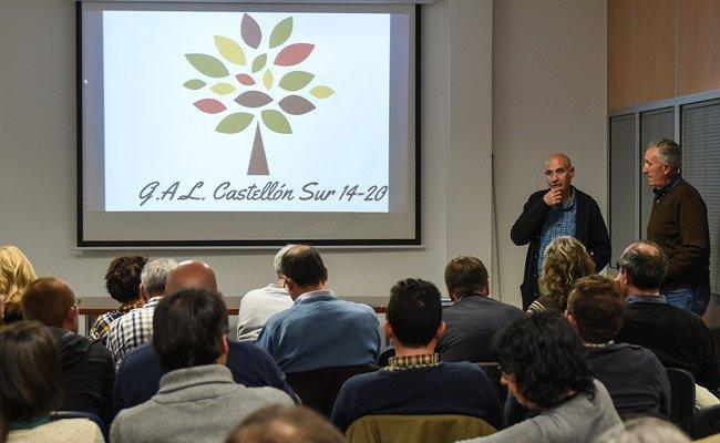 El GAL Castellón-Sur 14-20 presenta su estrategia