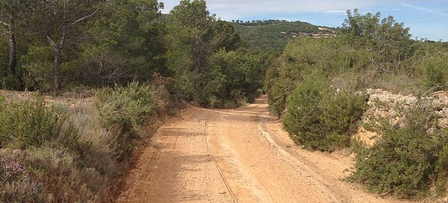 Arreglo y desbroce de caminos agrícolas