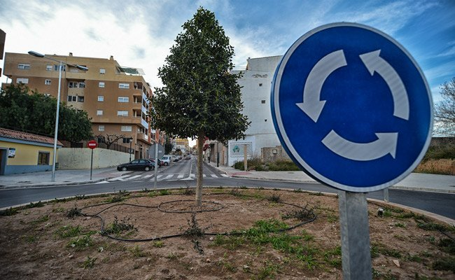 Además del acebo, que es un árbol que se desarrolla bien en entornos húmedos y terrenos frescos