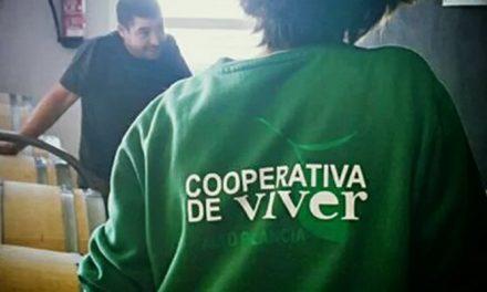 La Cooperativa de Viver adquiere Divinos & Viñas