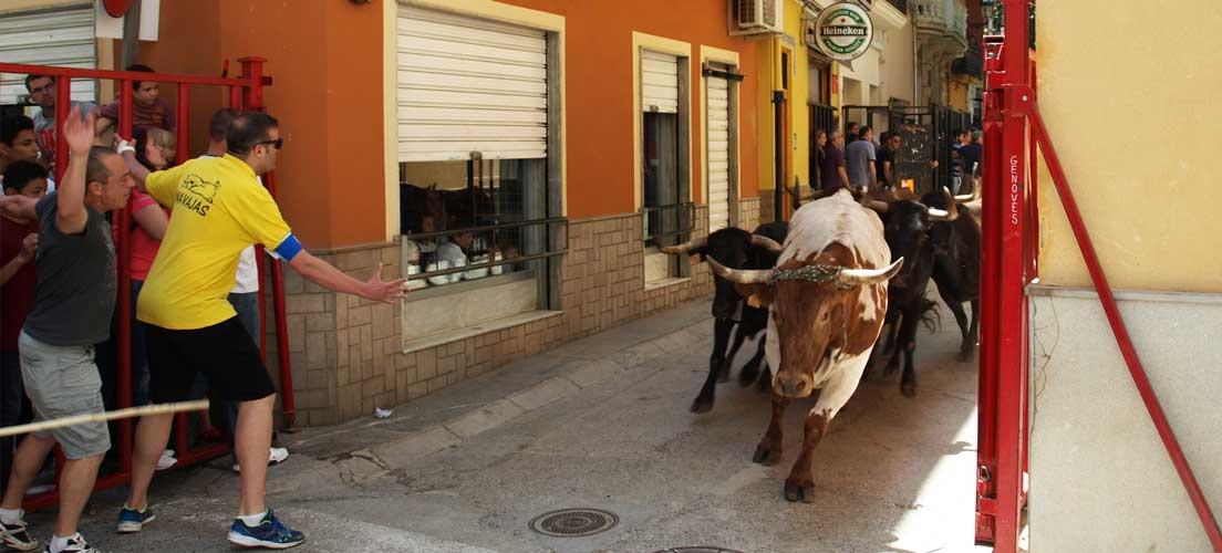 Fin de semana taurino en Navajas
