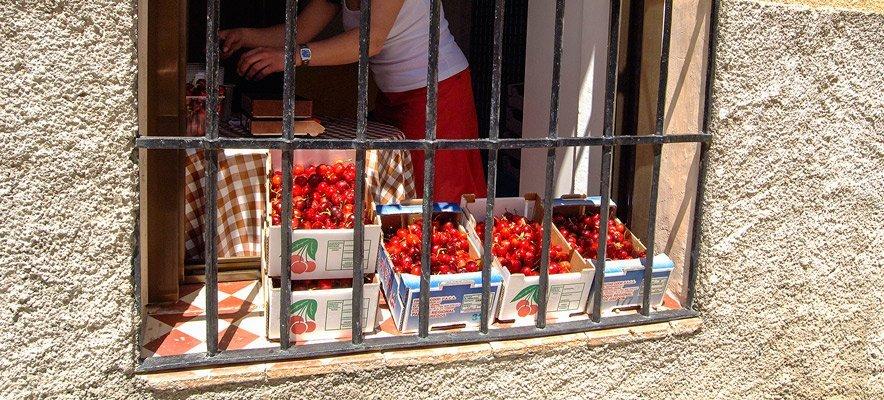 Programa de actos de la Feria de la Cereza de Caudiel