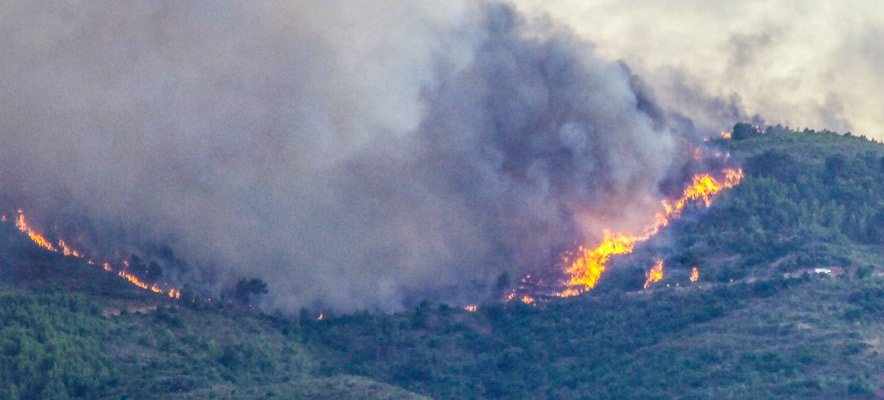 Arde la Calderona