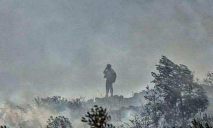 EUPV exige medidas para prevenir y frenar los incendios