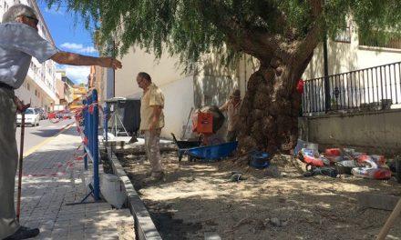 Reparan la zona de descanso de la calle Orfelino Almela