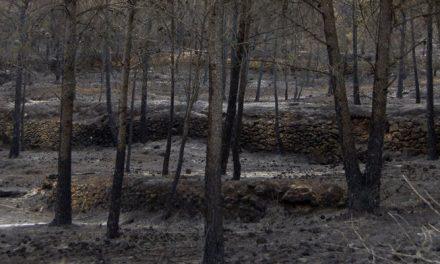 Segorbe pierde calcinadas 975 Has en el incendio de La Calderona