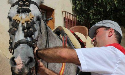 Los caballistas de la Entrada  engalanan con esmero a sus caballos