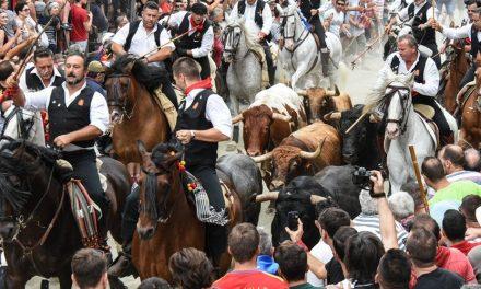 Segorbe celebra una Entrada con 5 toros y 13 caballistas