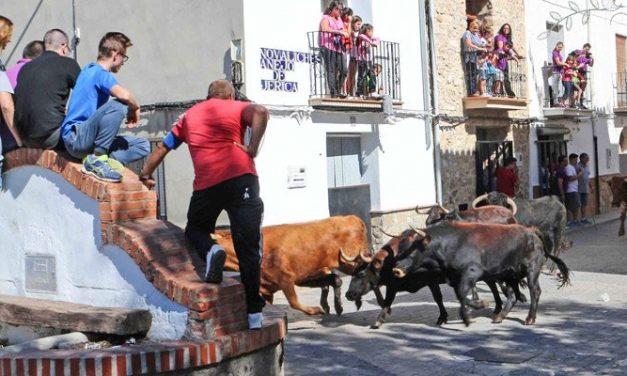 Novaliches concluye las fiestas de San Miguel
