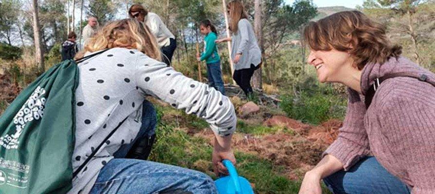 Escolares de Soneja celebran el Día del Árbol institucional