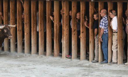 La Peña Desancajona de Segorbe organiza un viaje a Segovia
