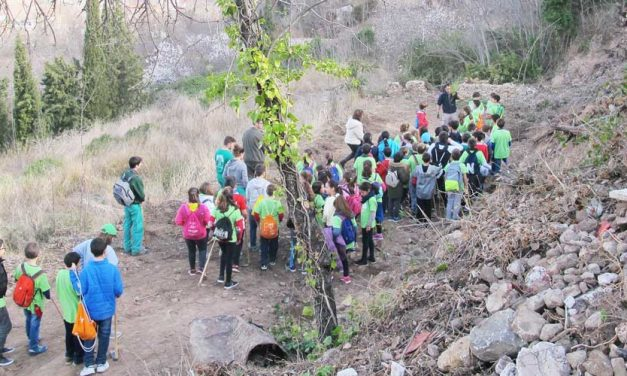 Un centenar de escolares de Segorbe reforestan la ladera del Argén