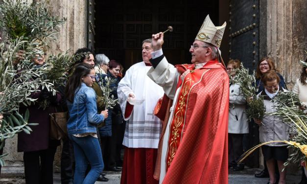 El obispo preside la bendición del Domingo de Ramos