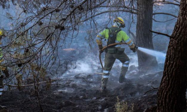 Estabilizado el incendio de Novaliches