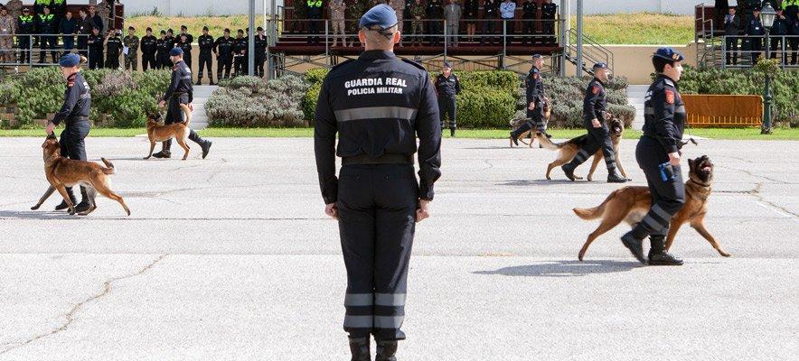 Segorbe acoge una exposición de motocicletas, artillería y perros de la Guardia Real