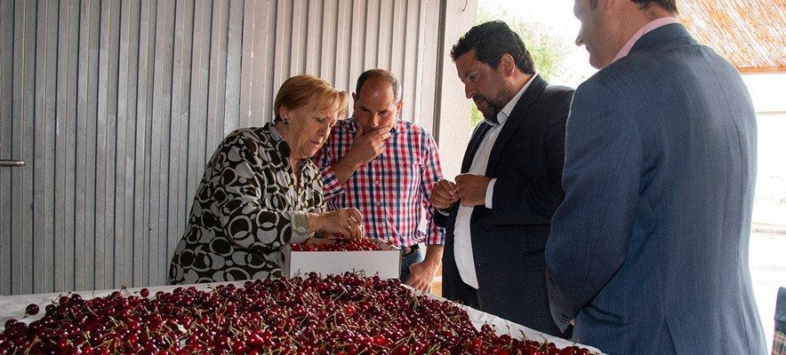 Diputación apuesta por la Feria de la Cereza de Caudiel