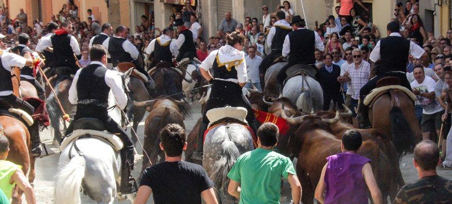 La Entrada de Toros y Caballos de Segorbe en Las Ventas de Madrid