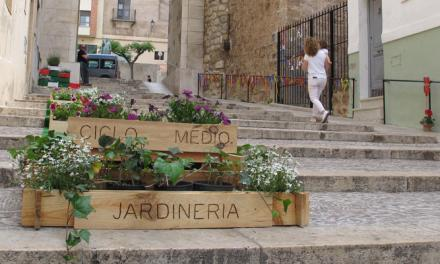El IES Alto Palancia decora con plantas la escalinata de la Catedral