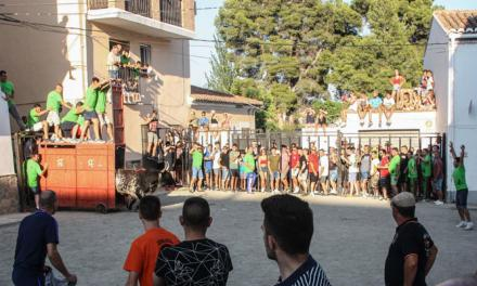 El toro Fajarroso viajó desde Andalucía hasta Jérica