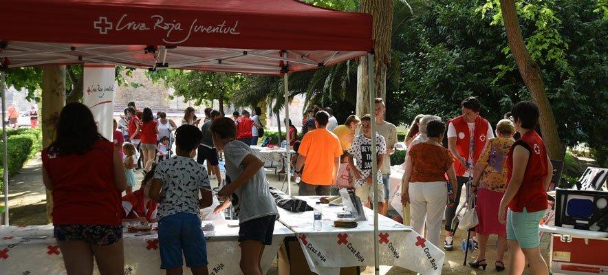 Actividades complementarias para la Feria del Voluntariado