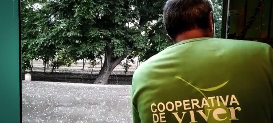 El granizo provoca daños por un millón de euros en Viver