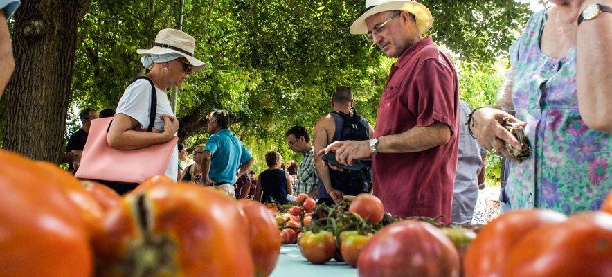 La Cata del Tomate se abrirá a nuevos productos