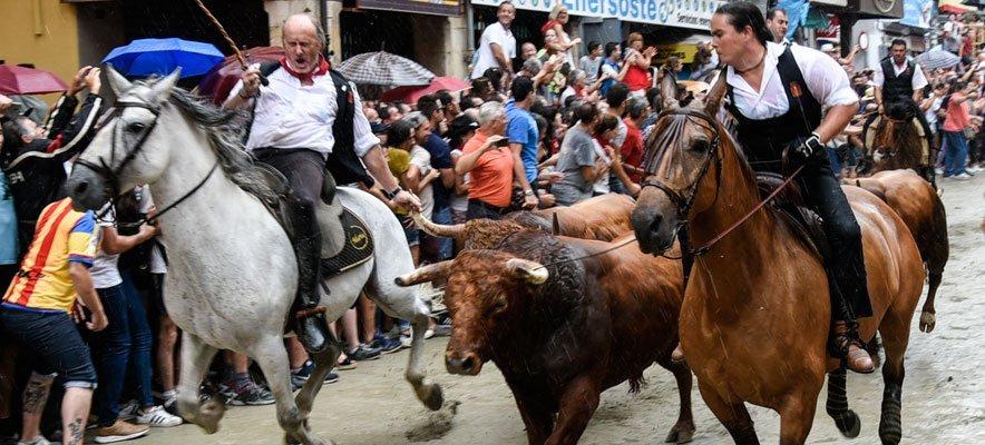 Diputación subvenciona la promoción de la Entrada de Toros y Caballos