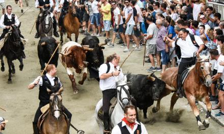 Cinco caballos heridos en la primera Entrada de Toros y Caballos