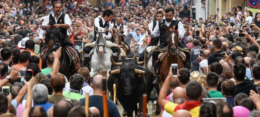La Entrada de Toros y Caballos atrae una densa multitud