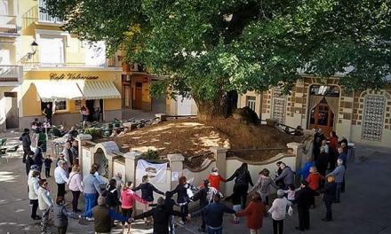Los vecinos de Navajas dan un abrazo a su centenario Olmo