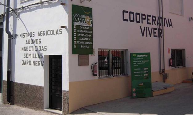 La Cooperativa de Viver mejora sus servicios básicos en la crisis actual