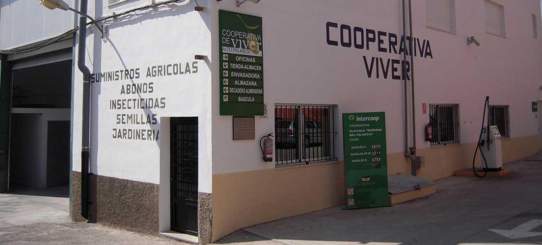 La Cooperativa de Viver es dirigida desde hoy por una mujer