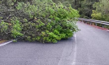 El PSPV pide a Diputación un plan consensuado de carreteras