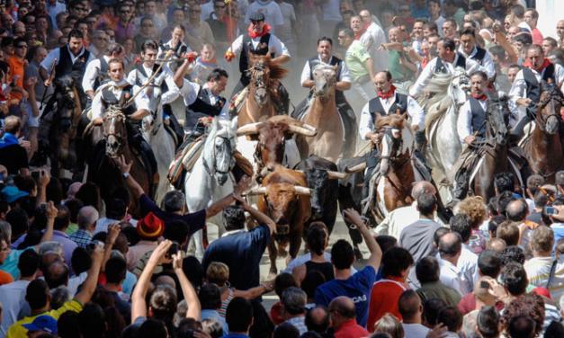 Los festejos de Segorbe, Pamplona y Cuéllar unidos por la internacionalidad