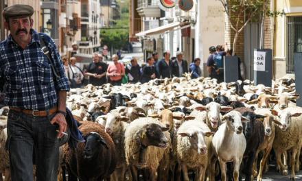 Una jornada sobre pastoreo reúne a una veintena de asistentes en Soneja
