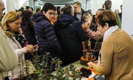 El Toro celebra este fin de semana la XV Feria de la Trufa