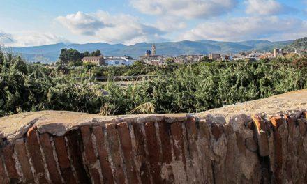 El Cantal de Altura quiere reactivar la participación de sus asociados